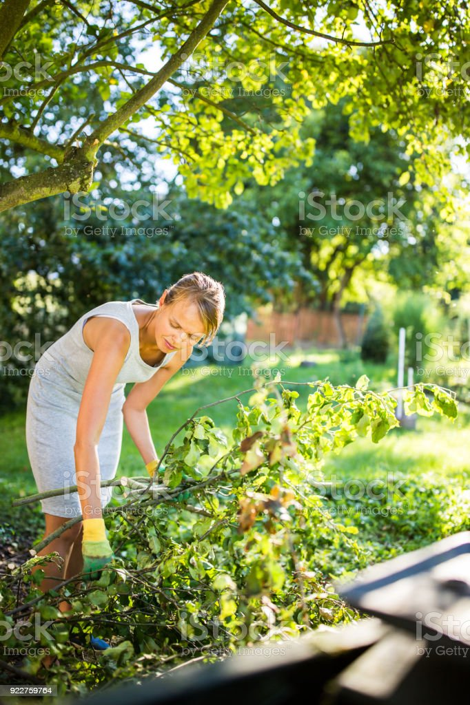 Pretty, young woman gardening in her garden, cutting branches stock photo