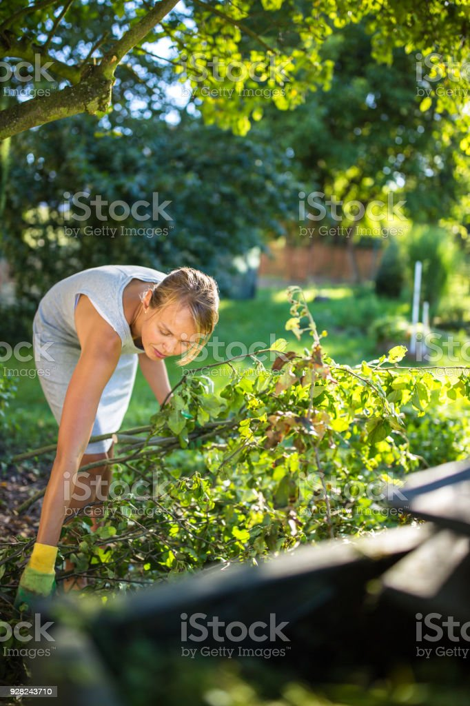 Pretty, young woman gardening in her garden stock photo