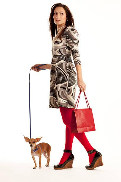 hübsche junge frau, die ihre kleine chihuahua und einkaufstasche - hunde strumpfhosen stock-fotos und bilder