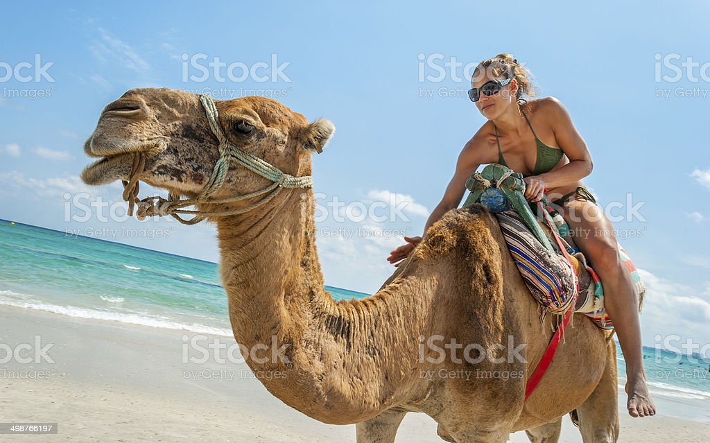 Pretty Young Woman Sitting on a Camel stock photo