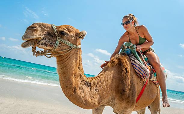 hübsche junge frau sitzt auf einem kamel - urlaub in tunesien stock-fotos und bilder
