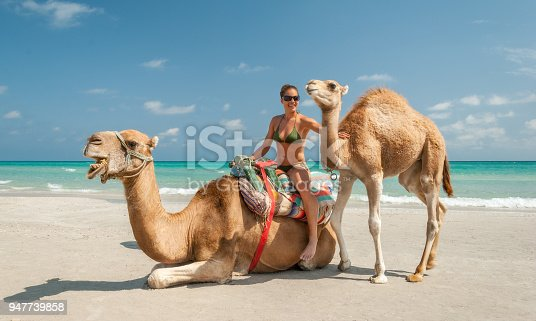 Pretty Young Woman Sitting on a Camel on the Beach during a Tropical Day