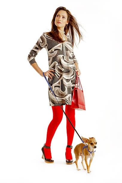 hübsche junge frau mit kleinen chihuahua und einkaufstasche - hunde strumpfhosen stock-fotos und bilder