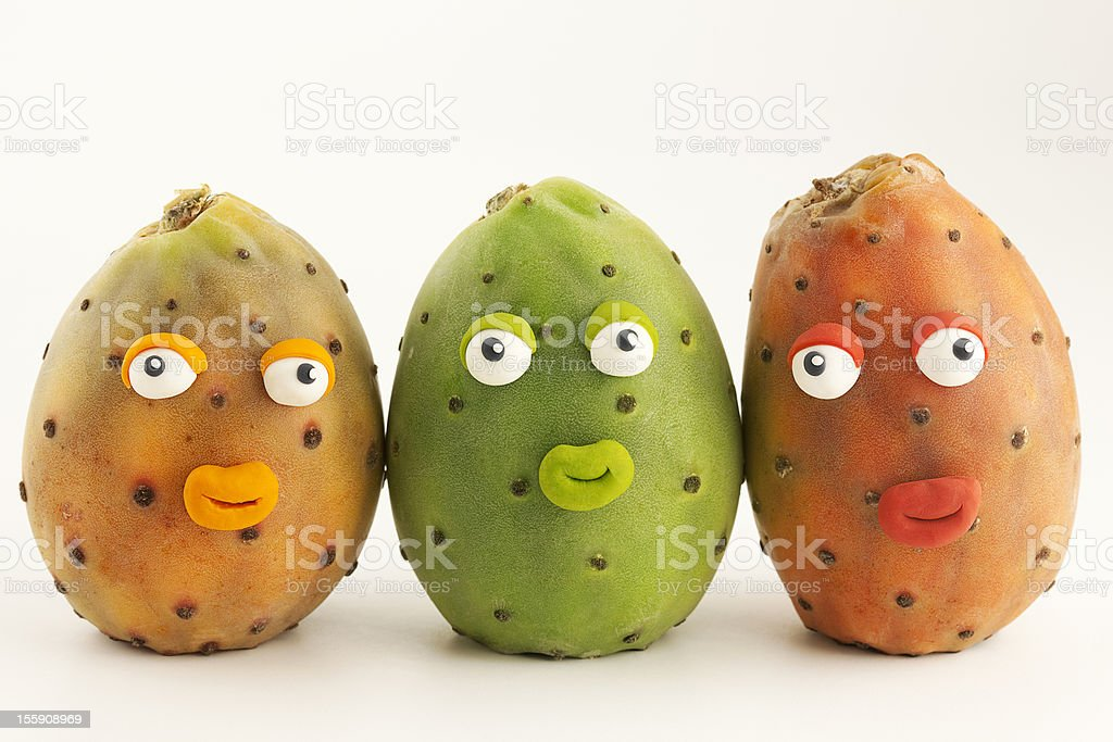 Prickly pear cactus portraits royalty-free stock photo