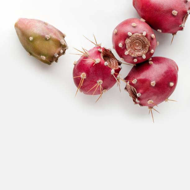 stachelige birne - kaktusfrucht stock-fotos und bilder