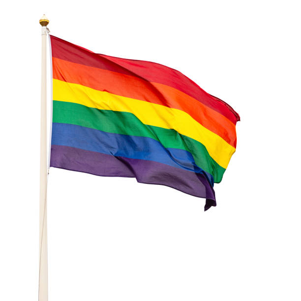 Pride flag isolated on white background
