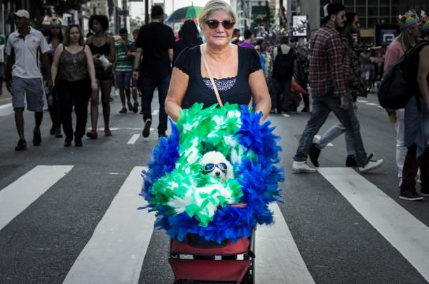 LGBT Pride Parade in São Paulo stock photo