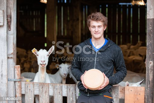 Pride Young farmer holding a Goat whole cheese round