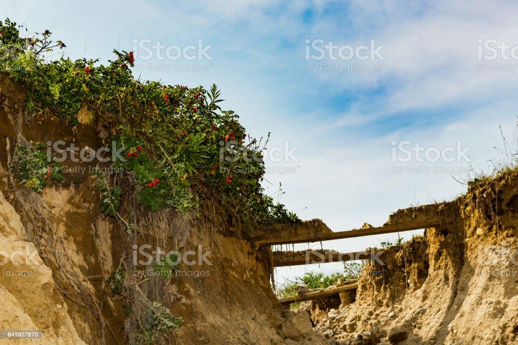 Primary Dune Erosion stock photo