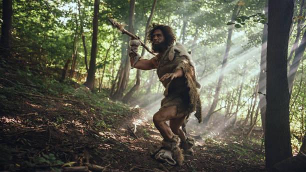 primeval caveman bär djur hud håller sten tippas spjut ser sig omkring, utforskar förhistoriska skog i en jakt på djur byten. neandertalare går på jakt i djungeln - rovdjur bildbanksfoton och bilder