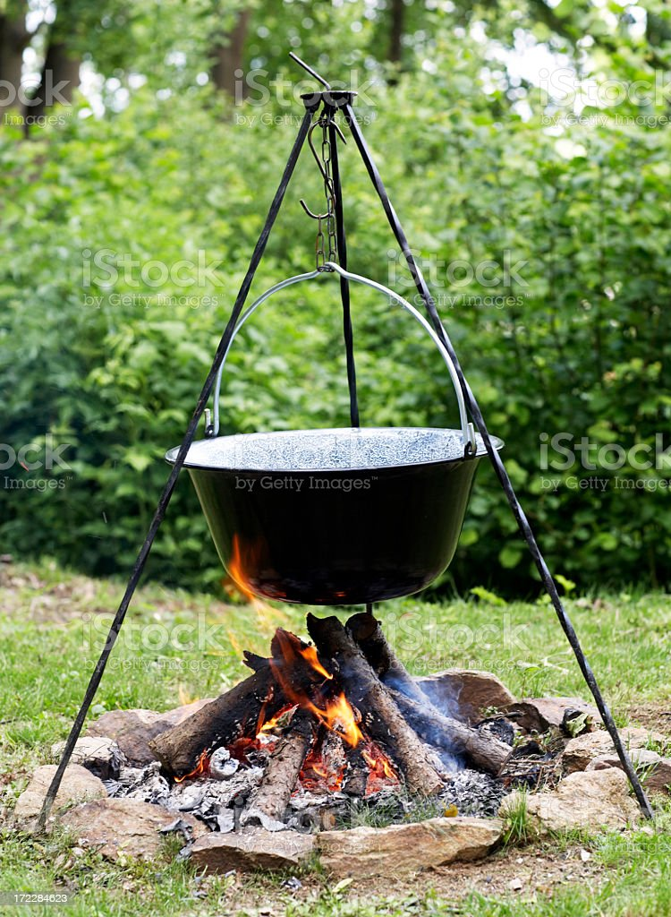 Primitive Campfire royalty-free stock photo