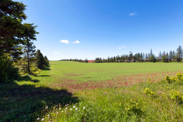 Prince Edward Island Canada stock photo