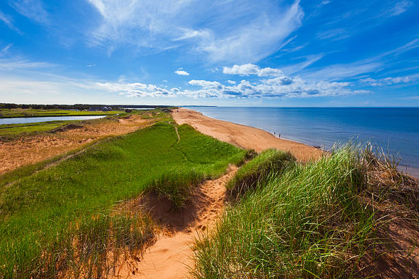 prince edward island, canada - prince edward island stock photos and pictures
