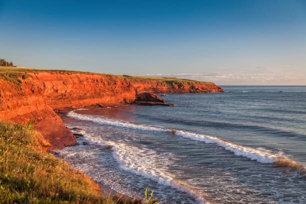prince edward island cliffs - prince edward island stock photos and pictures