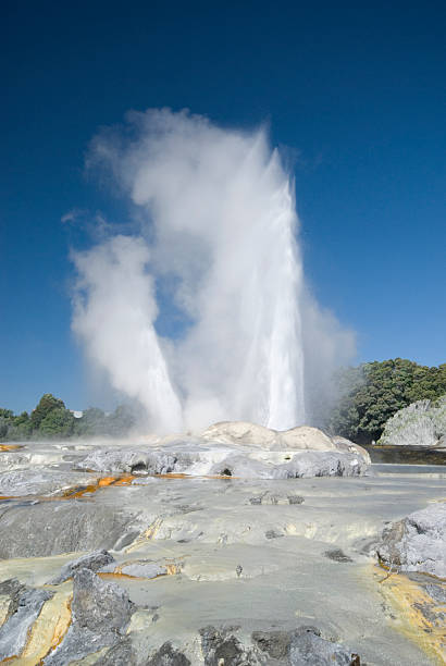 Prince of wales and Pohutu geyser 4  whakarewarewa stock pictures, royalty-free photos & images
