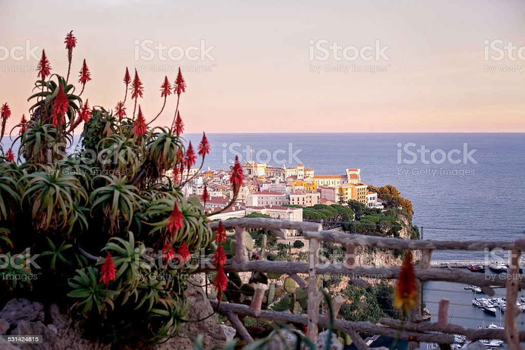 Prince's Palace in Monaco, view from the exotic gardens stock photo