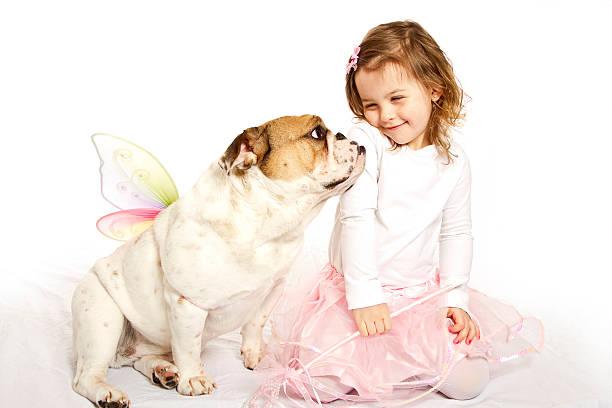 prinzessin und fee bulldogge - prinzessinnen tutu stock-fotos und bilder
