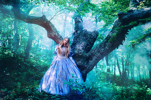 578573556 istock photo Princess in magic forest 589581504