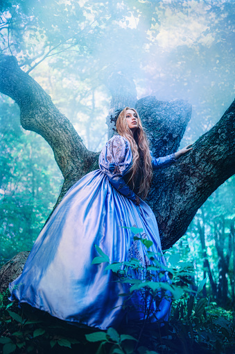 578573556 istock photo Princess in magic forest 589581722