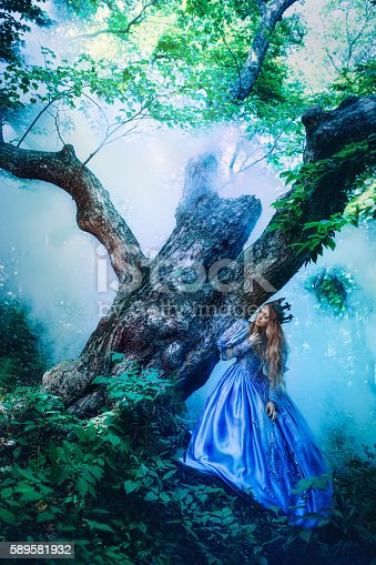 578573556istockphoto Princess in magic forest 589581932