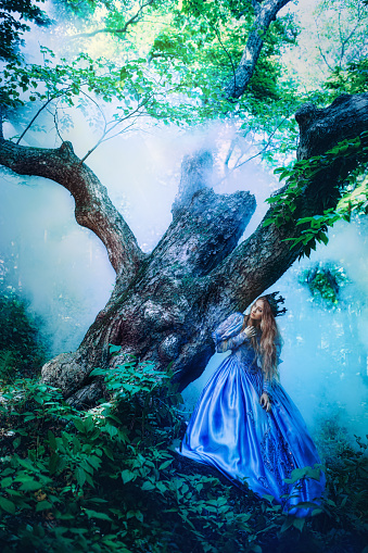 578573556 istock photo Princess in magic forest 589581932