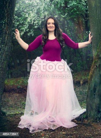 istock Princess 485473841
