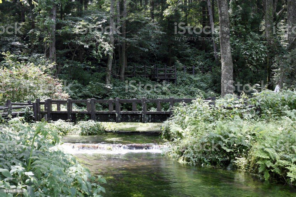Princess River Headwater springs stock photo