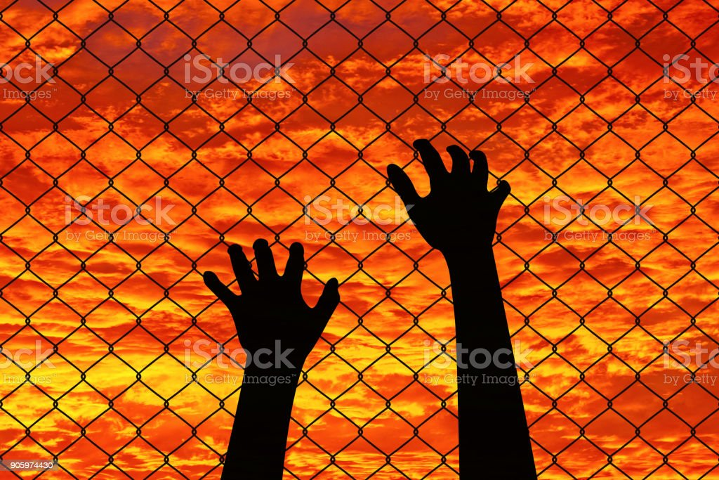 Prison Barbed Wire Fence at Sunset stock photo