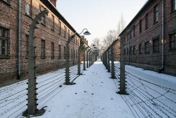 Prison exercise yard between the barbed wire. Museum Auschwitz - Birkenau, holocaust Memorial Museum. Barbed wire around a concentration camp. – zdjęcie