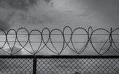 istock Prison security fence. Barbed wire security fence. Razor wire jail fence. Barrier border. Boundary security wall. Prison for arrest criminals or terrorists. Private area. Military zone concept. 1253209832