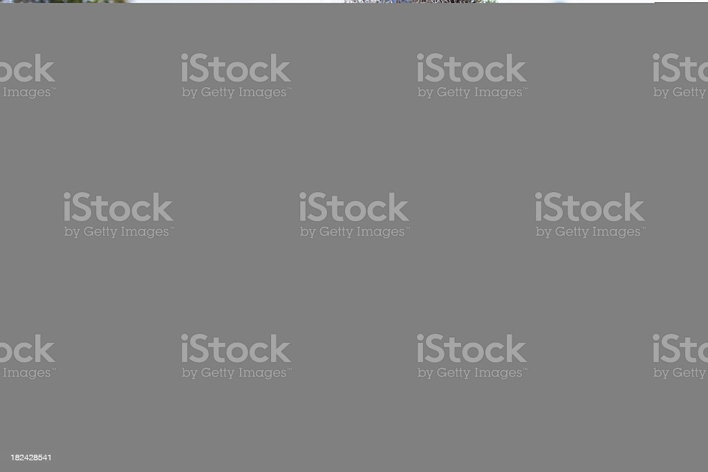 Prison with Bars royalty-free stock photo