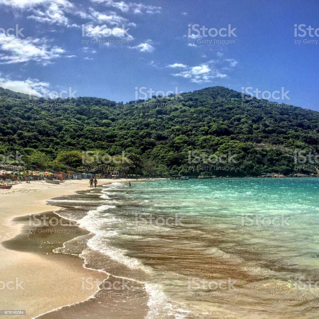 Praia intocada - foto de acervo