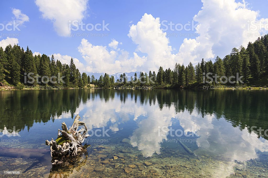 pristine mountain lake and forest with reflection royalty-free stock photo