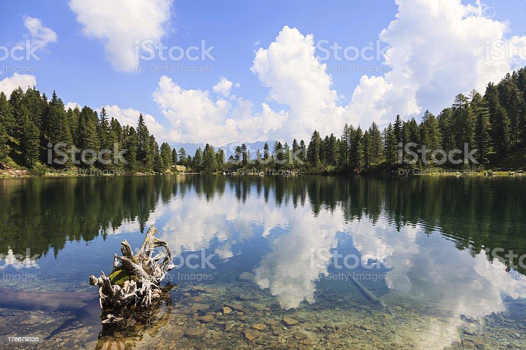 Prístinas lago de montaña y bosque de reflejo foto de stock libre de derechos