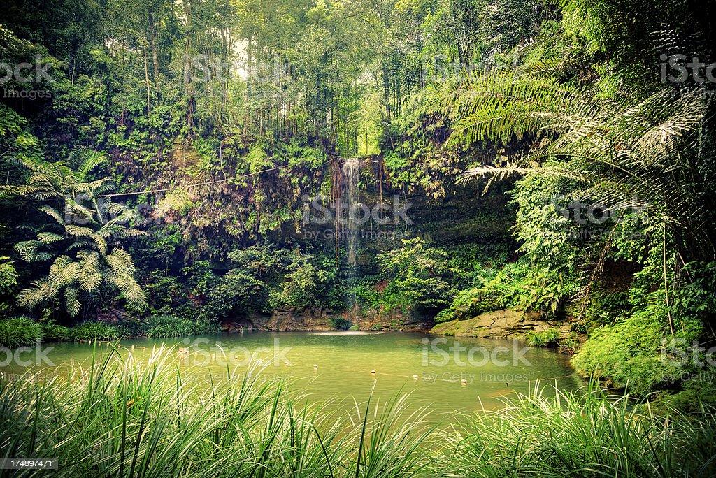 Pristine Waterfall in the Rainforest, Borneo Island royalty-free stock photo