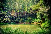 Beautiful waterfall in wild pristine nature