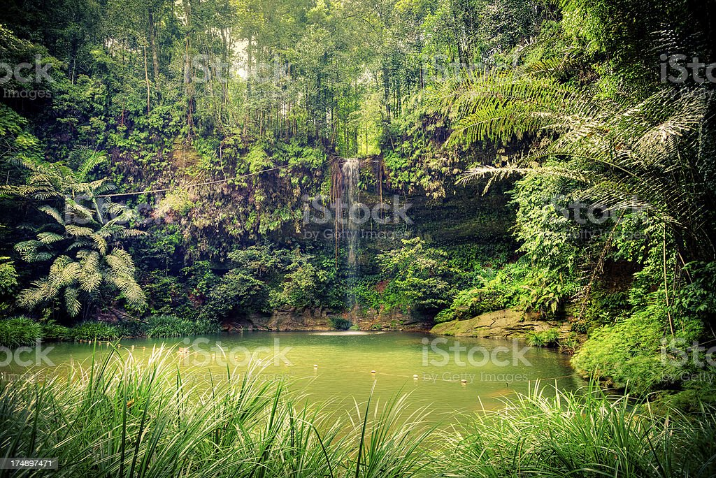 Pristine Waterfall in the Rainforest, Borneo Island stock photo