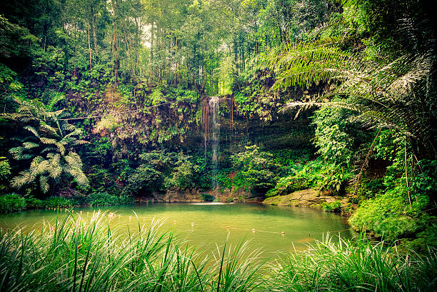 Pristine Waterfall in the Rainforest, Borneo Island Beautiful waterfall in wild pristine nature island of borneo stock pictures, royalty-free photos & images