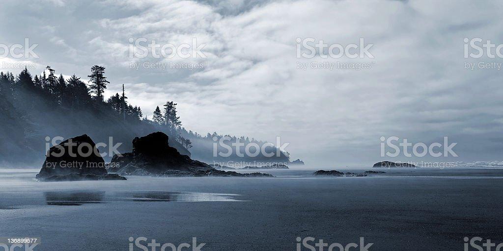 pristine wilderness beach stock photo