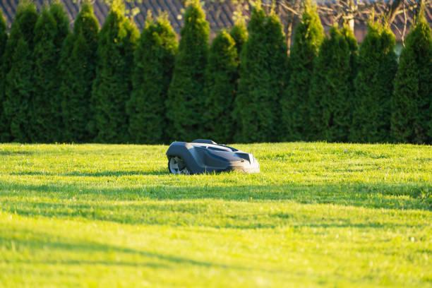 Private Home Garden Automatische RoboterMäher Mähgras – Foto