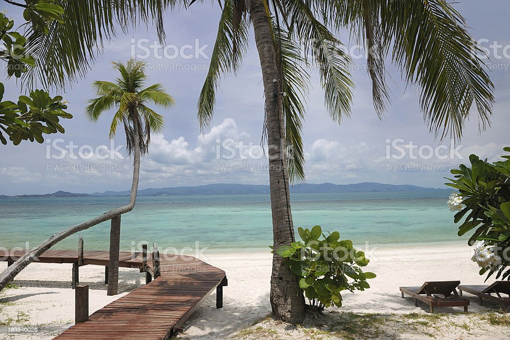 Private Paradise Beach with many Palm Trees royalty-free stock photo