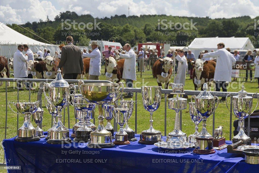 Prize winners. stock photo