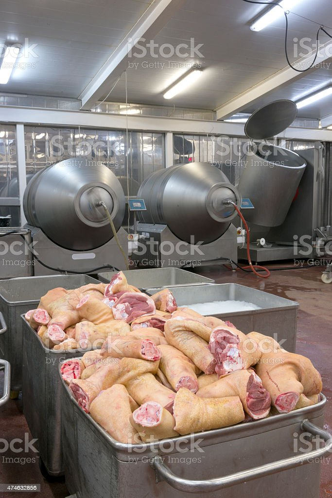 Production line in a food factory. Meat products preparation. stock photo