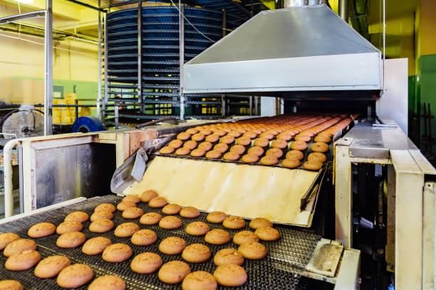 produktionslinie für hafer-kekse backen. kekse auf förderband - hafer cookies stock-fotos und bilder