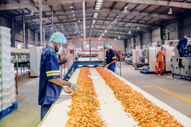 Production Line Workers at a Biscuit Factory in Africa stock photo