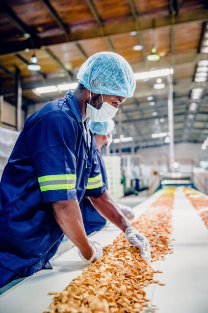 Production Line Workers at a Food Processing Plant stock photo