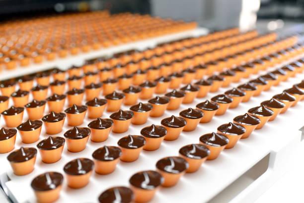 productie van pralines in een fabriek voor de voedingsindustrie - automatische transportband met chocolade - hand constructing industry stockfoto's en -beelden
