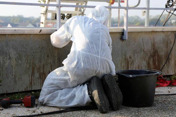 Professional asbestos abatement - foto stock