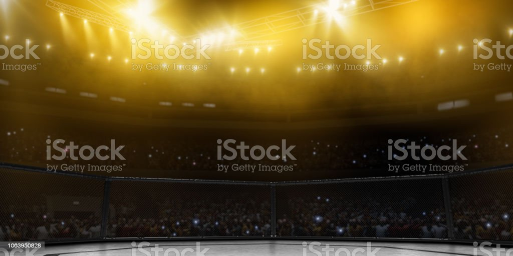 Professional boxing ring in 3D stock photo