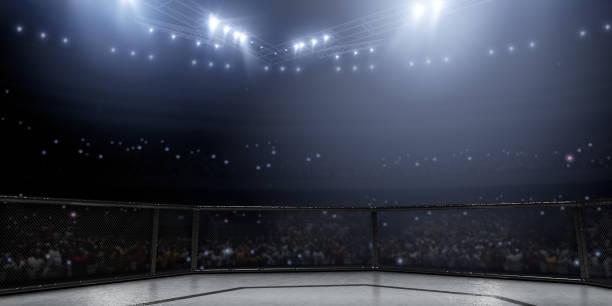 Professioneller Boxring in 3D – Foto